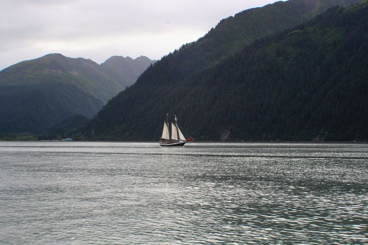 Sailing into Seward Alaska Shoreline Mountains Sailboat