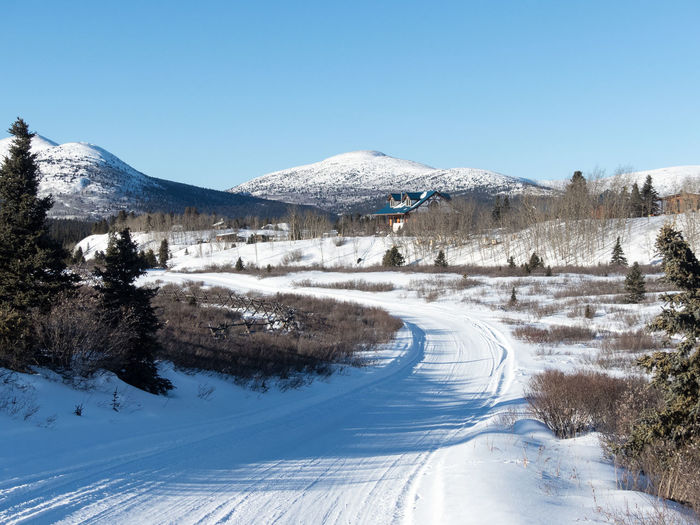 Wilderness Area Beauty In Nature Blue Canada Clear Sky Cold Temperature Day Landscape Mountain Mountain Range Nature No People Non-urban Scene Outdoors Road Scenics Snow Snowcapped Mountain The Way Forward Tranquil Scene Tranquility Winding Road Winter Winter Cabin Yukon Territory