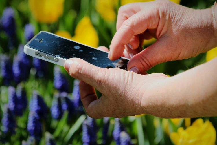 Close-up of person using mobile phone outdoors