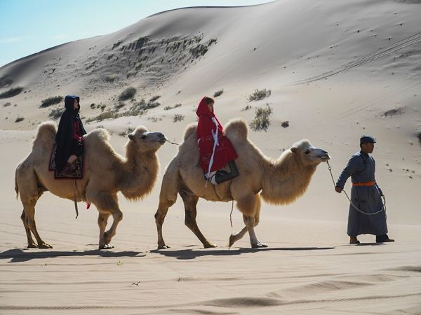 DesertFerrari Sand Desert Camel Sand Dune Men One Man Only Domestic Animals Only Men Outdoors Ferrari Full Length Day Adult Riding Sky Nature Real People Scenics One Person Beach Lost In The Landscape Connected By Travel Connected By Travel
