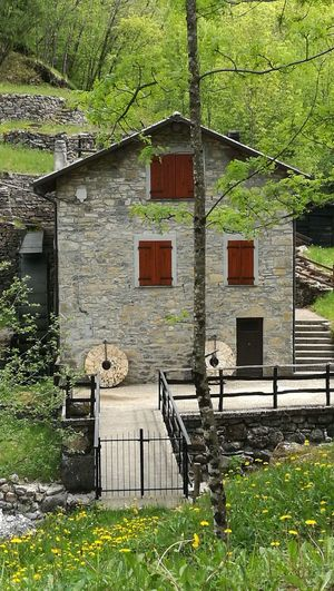 Nature Green Tree Countryside Stone Mill Old Mill  Old Mill Restored Val D'aveto Appennino Ligure Liguria,Italy Place To Visit Place of Heart