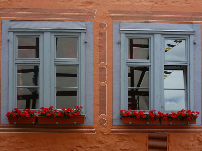 Das war schon immer so und das bleibt so ... Two Is Better Than One Windows Hanging Out Geranium Windows With Flowers Flowerbox Window Box Flowers Windows And Doors