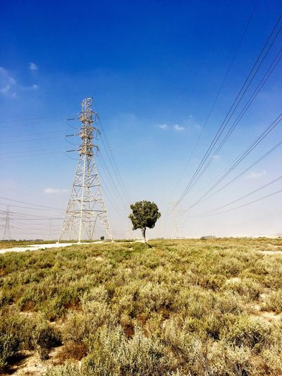 Tree Cable Electricity  Field Electricity Pylon Connection Power Supply No People Power Line  Blue Landscape Day Nature Sky Grass Outdoors