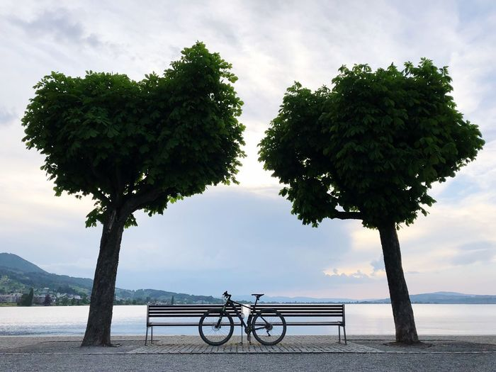 Bicycle parked by benches against lake
