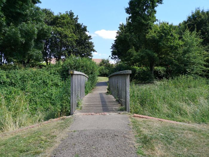 Summer Summer Sunshine Summer Sun Summertime Bring On The Summer Lovely Weather Hottestday Sun Summer Begins Tree Sky Grass Gate Entry Entryway Garden Path Archway Entrance Narrow Blooming