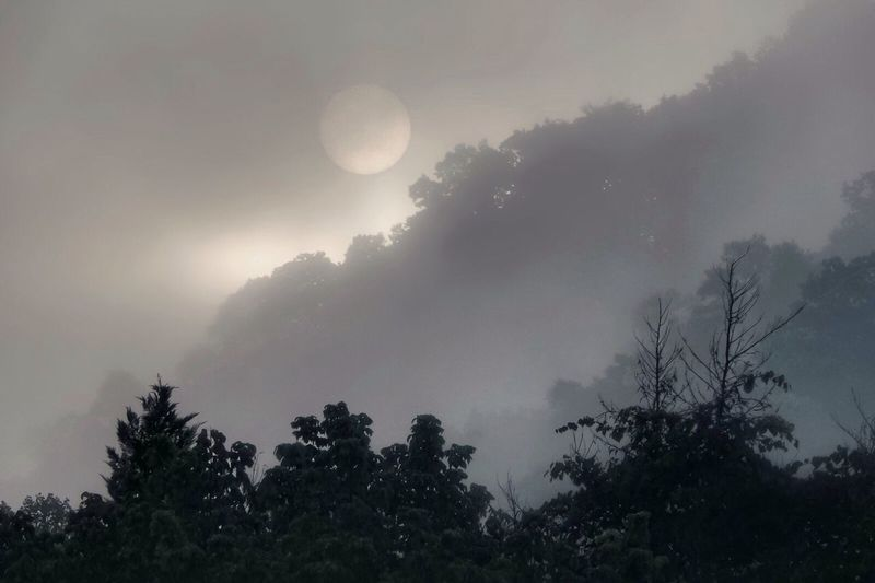 Good Morning my friends!💕🙋🏻💕 Hope all of you have a beautiful day.😌 Tadaa Community Eyeem Friends Tadaa Friends Good Morning Have A Nice Day♥ Foggy Morning Fog Moon Tranquility Beauty In Nature Outdoors No People EyeEm Nature Lover EyeEm Best Shots - Nature I Love Nature! In West Virginia