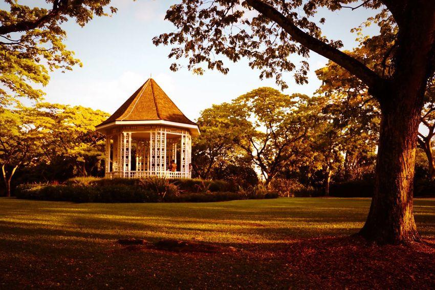 Botanical Gardens Singapore Botanic Garden