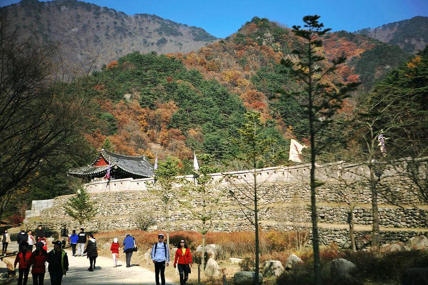 Munkyung Munkyungsaejae Autumn Castle Autumn Foliage South Korea Korea Fall