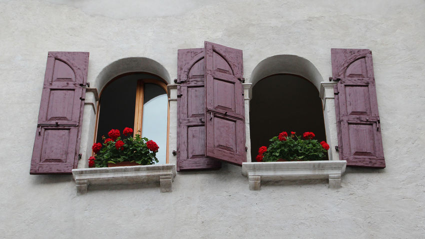 beautiful window in italy Balcony Building Exterior Built Structure Façade Flowers Italy Italy❤️ Open Window Open Windows Outdoors Residential Structure Shutters Window Windows