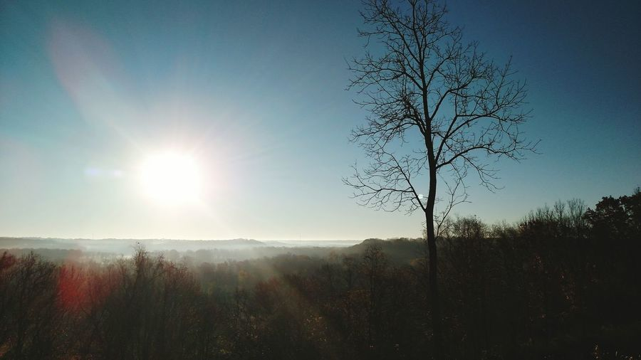 Fog Foggy Morning Morning Sunrise Indiana Field
