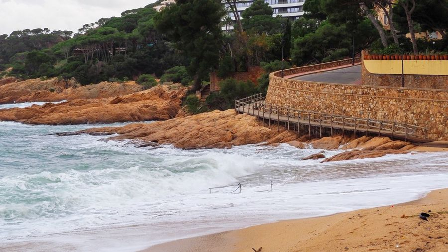 Beach Water Costa Brava Tree Water Land Plant Nature Beach Day Beauty In Nature Tranquility No People Tranquil Scene Scenics - Nature Non-urban Scene Rock Autumn Mood Land Tree Sport Sea Surfing Nature Aquatic Sport Beauty In Nature Wave Architecture Built Structure Motion