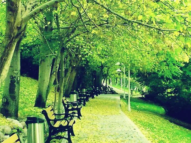 Huzuru bulmaya yardımcı .. Botanik Park Huzur Taking Photos Landscape OpenEdit EyeEm Best Edits Ankara Baskent Architecture