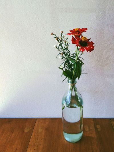 High angle view of flowers in bottle on table against wall