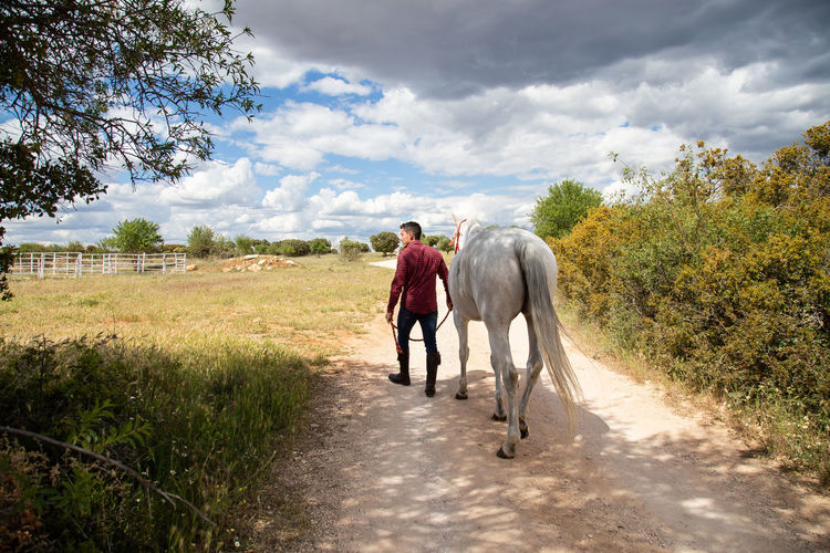 Rear view of friends riding horse