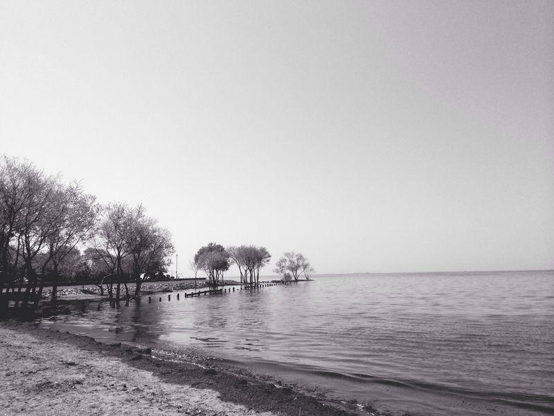 Lake 琵琶湖 Monochrome