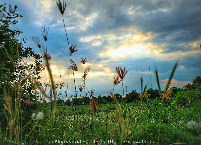 จิ ต น า ก า ร Fujifilm X-m1 Open Edit Walking Around Taking Photos Enjoying Life Relaxing EyeEm Best Shots Sunset Nature Sky