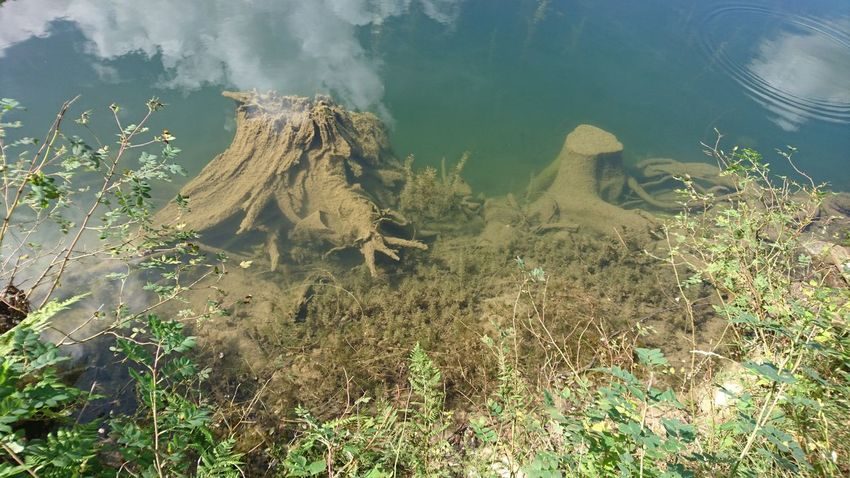 Underwaterworld of Lac des Plagnes Nature Outdoors No People Day Water Underwater UnderSea Lake View Lake SavoiExperience Alps France AlpesFrancaises Haute-Savoie  Savoie Summer Cloud - Sky Scenics Beauty In Nature Reflection Lost In The Landscape