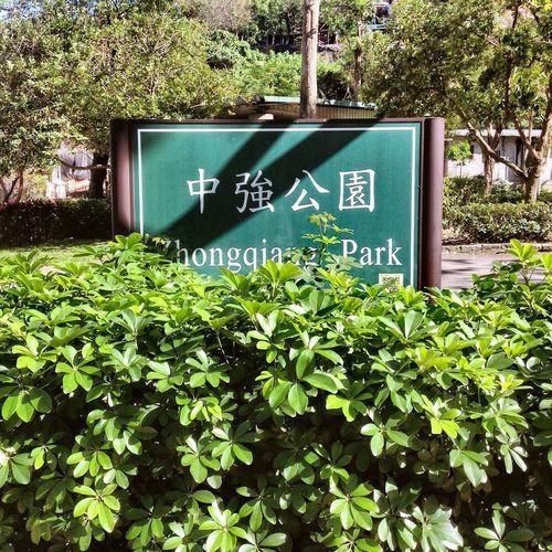 Showcase: February Zhongqiangpark Green Forest Taipei Taiwan