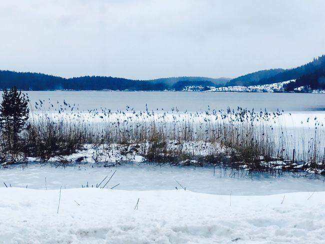 Lake Snow Abantgölü Abant Bolu