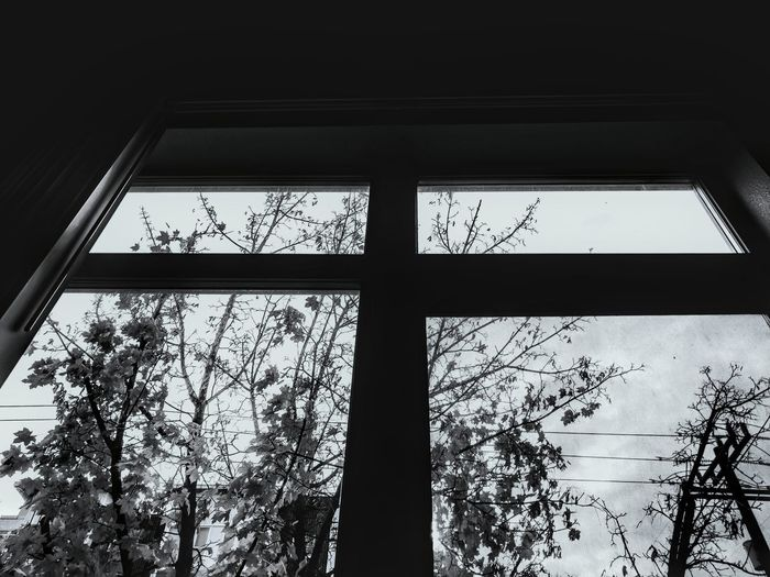 Low angle view of window in winter