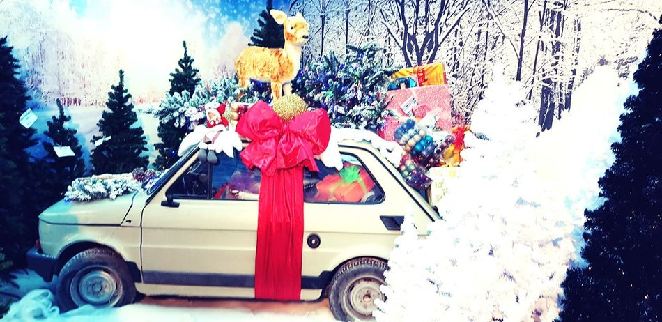 Christmas Natale  Ghiaccio Inverno 2017 Natale 2017 Freddo Architecture Blue Bianco Ghiaccio Neve Nature Auto Vintage