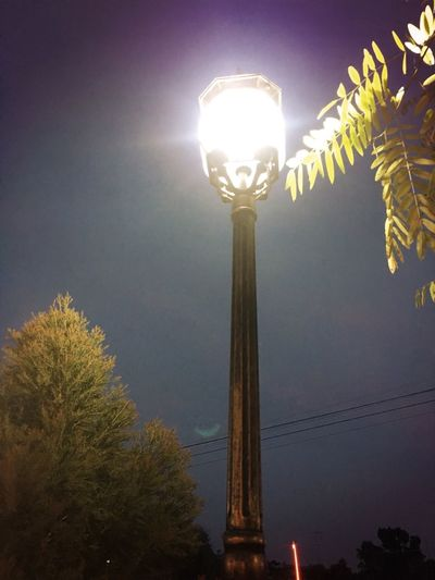 Miss you Alone Time Beautiful View Beautytime Loveit♥ Tree Illuminated Sky Nature Lighting Equipment Low Angle View Plant Night No People Light Growth Glowing Outdoors Street Street Light