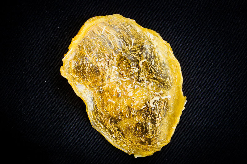 Close-up of yellow leaf on rock against black background