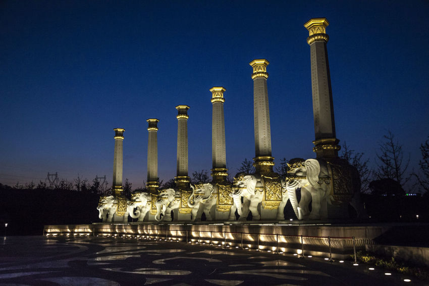 Art Buddhist Architecture Buddhist Art Culture Religious  Stone Elephant Stone Pillars Temple Architecture Blue Buddhism Built Structure Illuminated Night No People Outdoors Sky