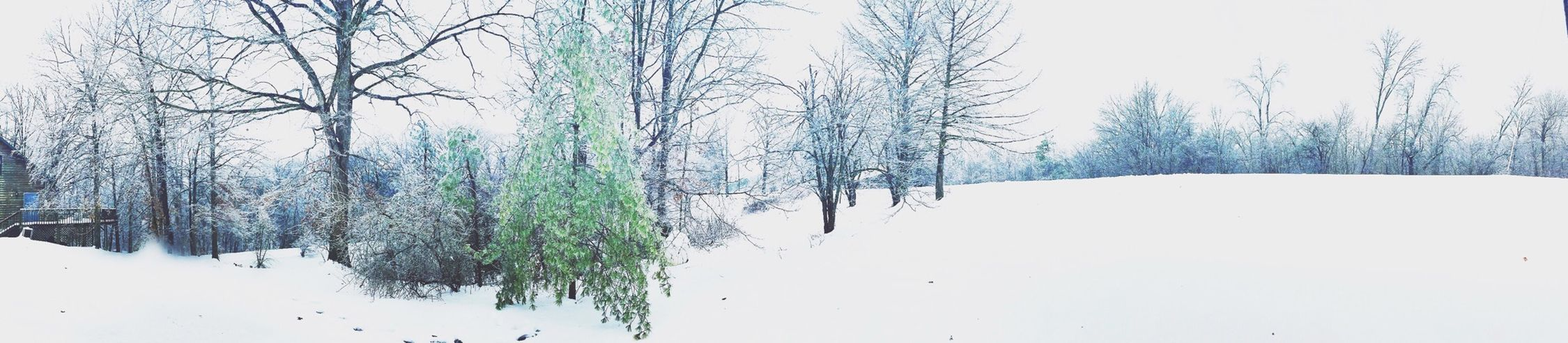 Cold but beautiful ❄️?❄️ Cold Photographer Eye4photography  IPhoneography EyeEm Best Shots Winter Snowpocalypse Love Snow EyeEm Nature Lover