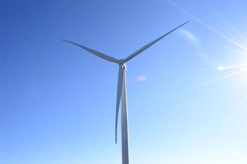 Bangui Windmill Farm, Ilocos Norte, Philippines, the first in ASEAN EyeEm Best Shots Philippines Eyeem Philippines Snoworld.one/bestshot Bestshot Wind Power Wind Turbine Blue Sky Windmill Environmental Conservation The Traveler - 2018 EyeEm Awards The Great Outdoors - 2018 EyeEm Awards The Architect - 2018 EyeEm Awards
