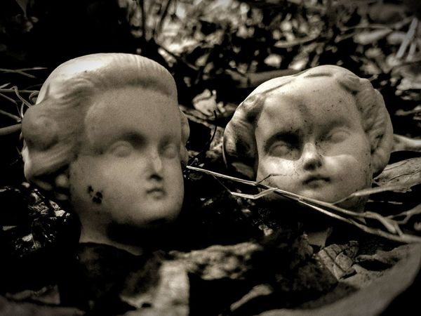 Outdoors Togetherness Nature Black And White Black And White Photography Eerie Scene Creepy Eerie Eerie Beautiful Curiosity Bizzare StrangeOddities Close-up No People Creepy Atmoshpere Antique Creepy Face Surrealism Surreal Surrealism Photography Surrealistic Eccentric Eccentricity Weird