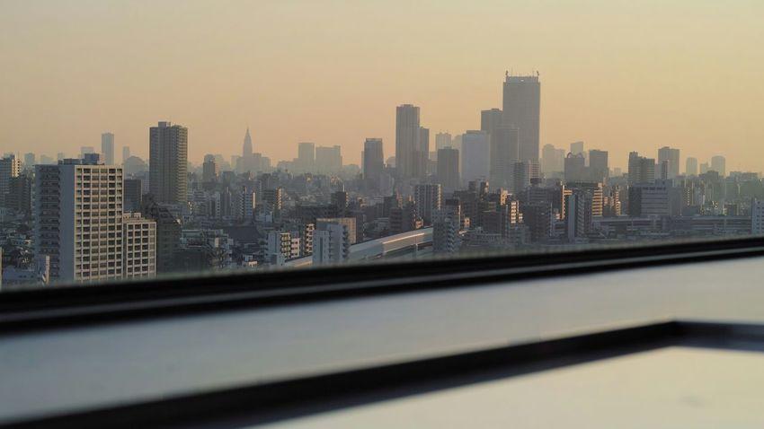 王子神社のあと北とぴあの展望台(17階)へ。今後できたら神社→展望台をセットで見に行こうと思ってます。Observation Deck From My Point Of View Tokyo Landscape Tokyo Buildings & Sky Cityscapes Sunset Buildings Silhouettes Sunset Landscape Hello World Enjoying Life Taking Photos SIGMA DP3 Merrill 16:9 Crop