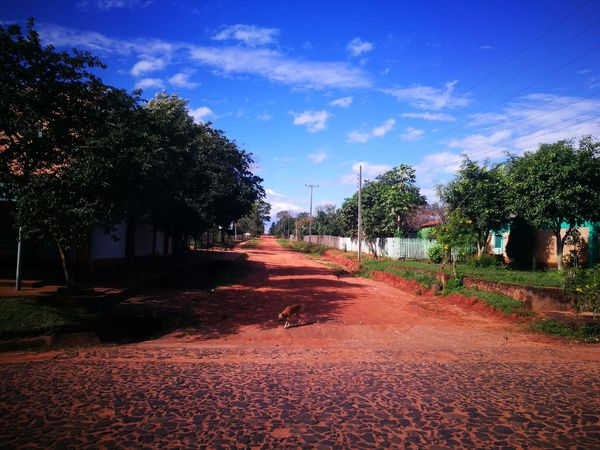 Ara Pyahu San Pedro Paraguay Paraguay ♥ Tree Autumn No People Day Sky Rural Scene Tranquility Peaceful Place Paradise On Earth Paradise ❤ Blue Sky And Clouds Cloud - Sky