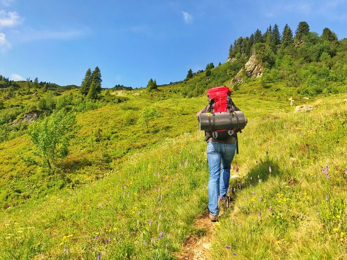 Alps Hiking Trail Hiking Bagpacker Backpack Hiking One Person Field Real People Sky Nature Growth Green Color Beauty In Nature Lifestyles Landscape Outdoors Full Length Scenics