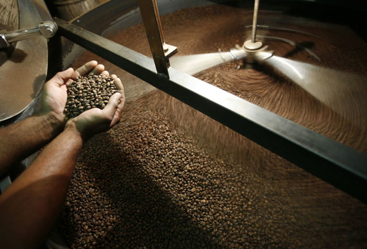 High angle view of hands holding coffee beans in industrial kettle