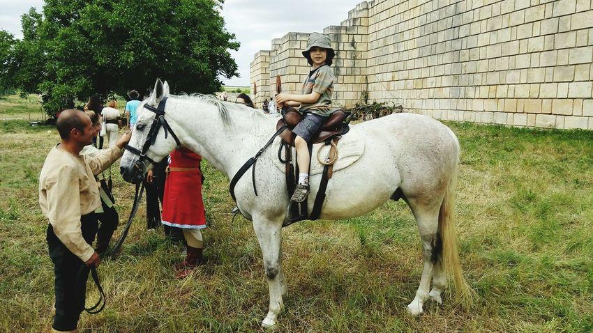 Capturing Movement Horse Rider