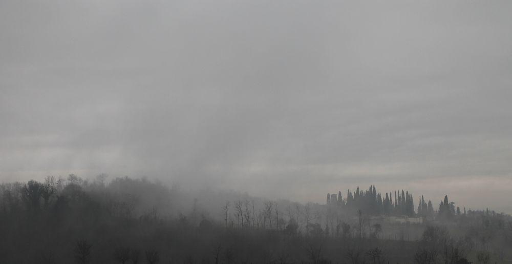 fog again Fog
