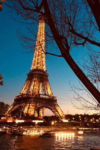 Paris I Tamesis Paris Night Crepuscular Light Eiffel Tower Torre Eiffel Paris Architecture Tree Built Structure Sky Illuminated Bare Tree Nature