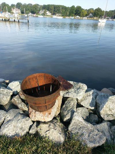 Crab Basket on