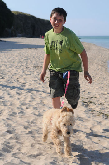 Beach Blue Sky Boy And Dog Boy And Dog Running On Beach Boy And Dog Running Through A Field Dog Dog Walking Dogs Full Length Fun Golden Doodle Golden Doodle Puppy One Person Outdoors Pet Pet Owner Pets Running Sand Sea Smiling Togetherness Vertical