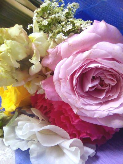 卒業 卒業 Graduation March Showcase University Son 3月 Flowers