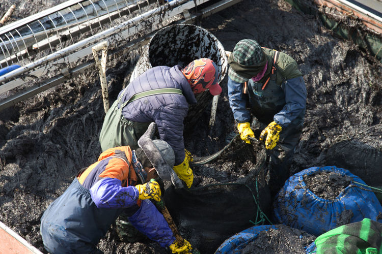 High angle view of workers working in mud
