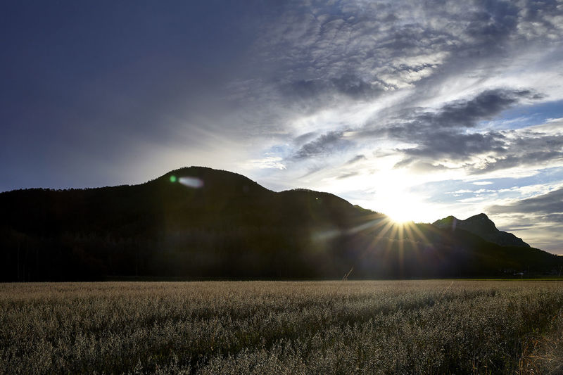 Scenic view of field and mountains against bright sun