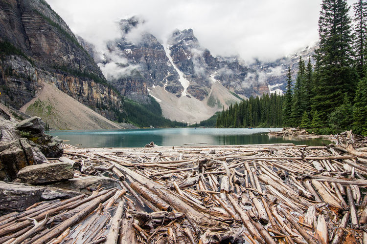Alberta Banff National Park  Evergreen Trees Eye Em Nature Lover Lake Louise,Alberta Mountain View Nature Photography Beauty In Nature Canada Cold Temperature Day Evergreen Forest Lake Lake View Landscape Mountain Mountains Nature No People Outdoors Scenics Sky Snow Water