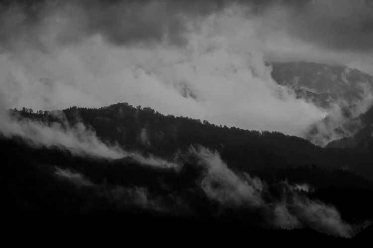 Beauty In Nature Bw Cloud - Sky Day Low Angle View Mountain Nature No People Outdoors Scenics Sky Tranquil Scene Tranquility Tree