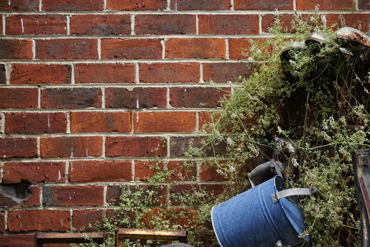 Rear view of man against brick wall