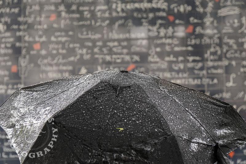 Capture The Moment Paris Rain Blackandwhite