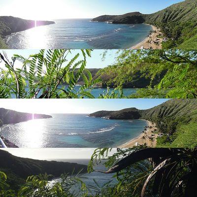 Hanama Bay Pt. Photography By: Videoprince MorningIG Hawaii Hanamabay Panoramic Beach Beautiful Bananaleaves Luckywelivehi Photography Instagram Sunday Samsung Videoprince Hnnsunrise