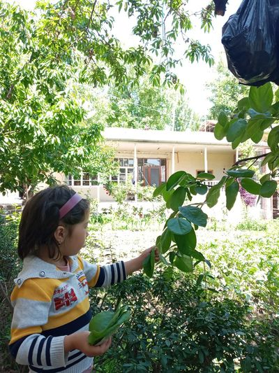 Girl looking at plants against trees