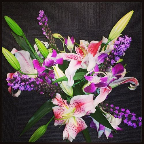 Treating myself the way I deserve to be treated!!! Pinkstargazerlilies Purpleliatris Purpleorchids Freshflowers iloveflowers treatingmyself makesmefeelhappy